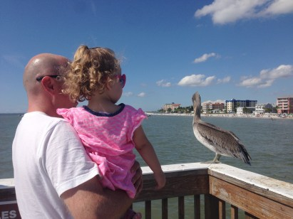 Daddy and Emily's Favourite - Brown Pelican