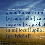 Matei 10.16, (I)