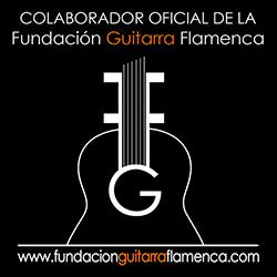 fundacion-guitarra-flamenca-banner-250x250
