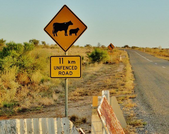 cow and sheep crossing sign australia