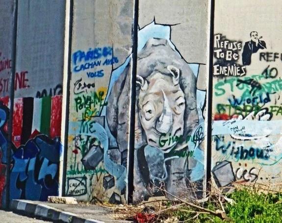 Israel defense wall mural rhino