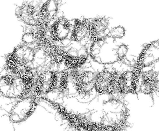 wordsarepicturesupdate.jpg