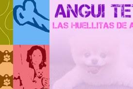Fin de semana dedicado a los animales // By @angui_tete