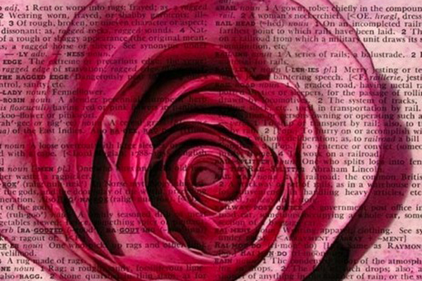 #roseshards pinterest