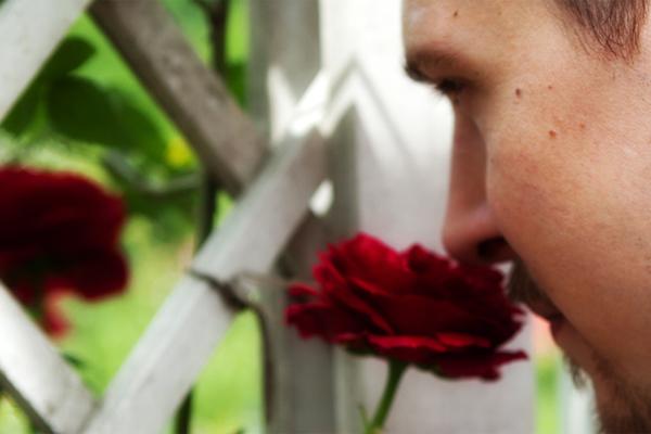 Douglas Bender Smelling Roses #roseshards