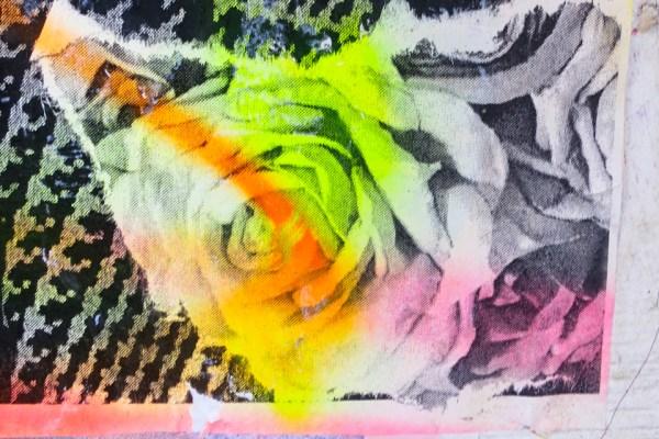 Asphalt Rainbow Fragrance Brief