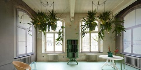 Unique Space-Saving Light Design with Potted Plants1