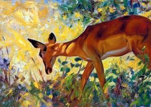 Deer in the Sunlight