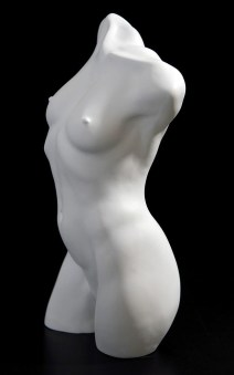 Female-Torso,-left-side