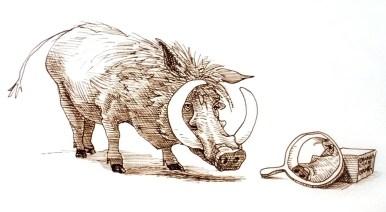 Wart Hog and Mirror