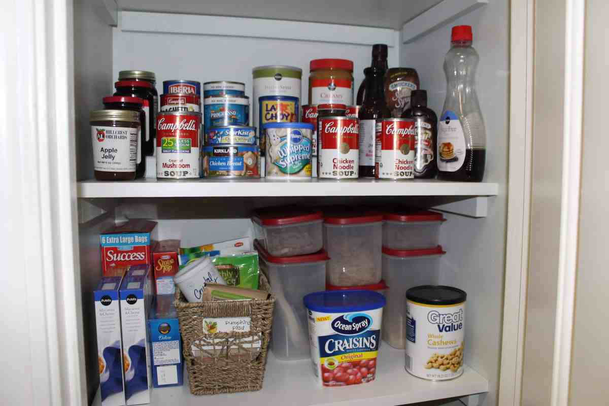 101 in 1001: Why Didn't We Do That Sooner?!? Pantry Upgrade Edition