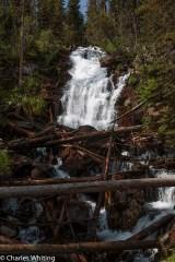 Fern Falls Rocky Mountain National Park