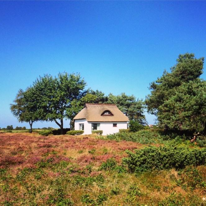 Häuschen in der Dünenheide von Hiddensee