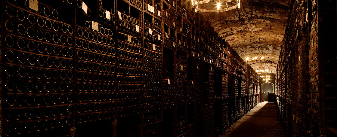 Chateau Mouton Rothschild The Cellars