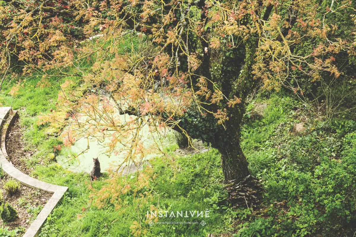 -frederique-jouvin-instantane-photo-chateau du bézyl017