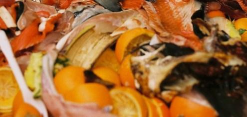 food waste Management Services UK