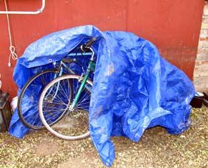 Why you need a bike shed