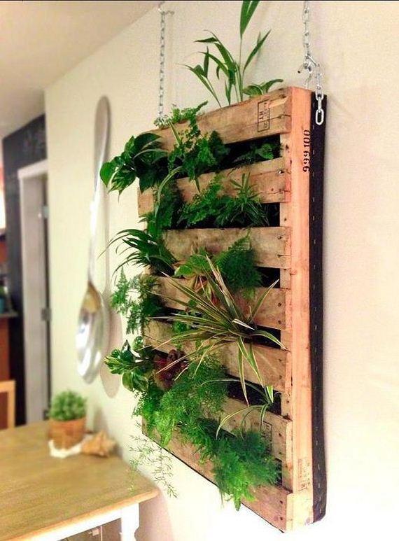 indoor window herb garden