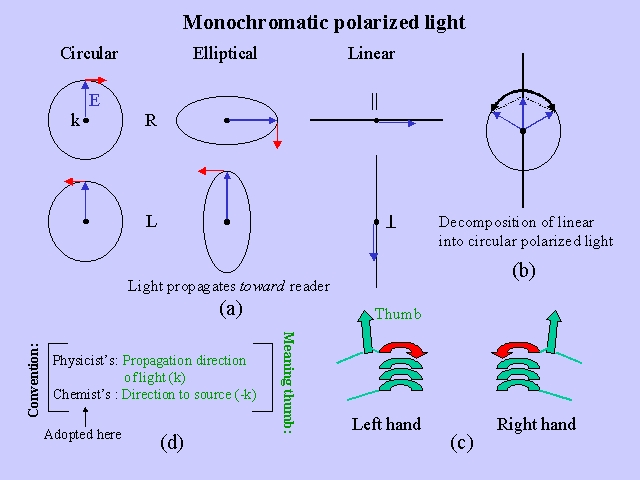 Monochromatic polarized light
