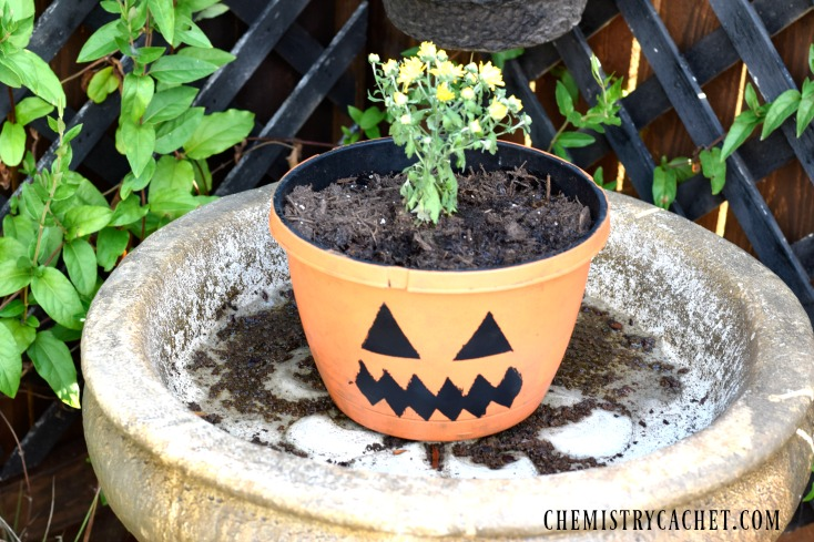 Almost Free DIY Pumpkin Planter for Fall