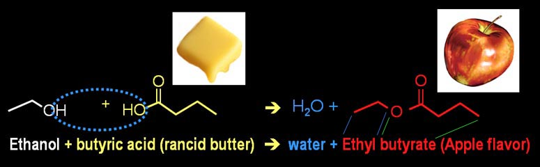 Types of Chemical Reactions - synthesis reaction