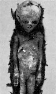 Dropa Alien?