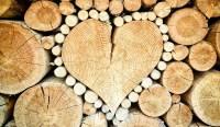 Schachprodukte aus Holz: Die Natur macht, was sie will
