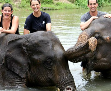 Bathing with elephants - loads of fun for elephants and humans :)