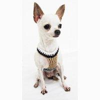 Sparta Dog Costumes Dog Harnesses Pet Clothes Handmade Crochet