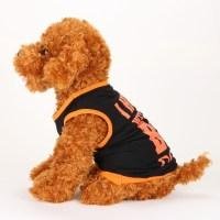 Clothing For Puppy - Goldenacresdogs.com