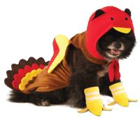 Rubie's Turkey Dog Costume - Chihuahua Kingdom