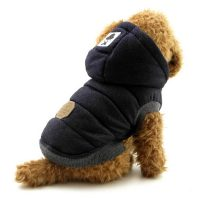 Do Small Dogs Need Winter Coats - Tradingbasis