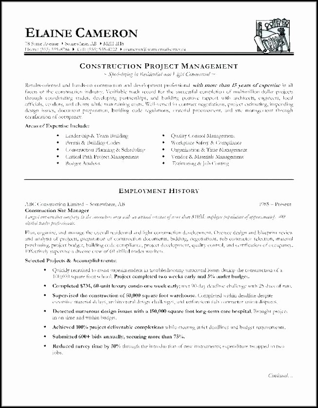 Construction Resume Templates For Microsoft Word - Resume  Resume