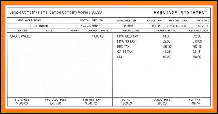 Blank Pay Stubs Template - Template 1  Resume Examples #ko8LQzm19J