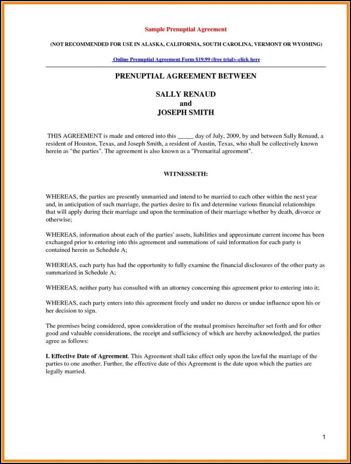 International Prenuptial Agreement Template - Template 2  Resume