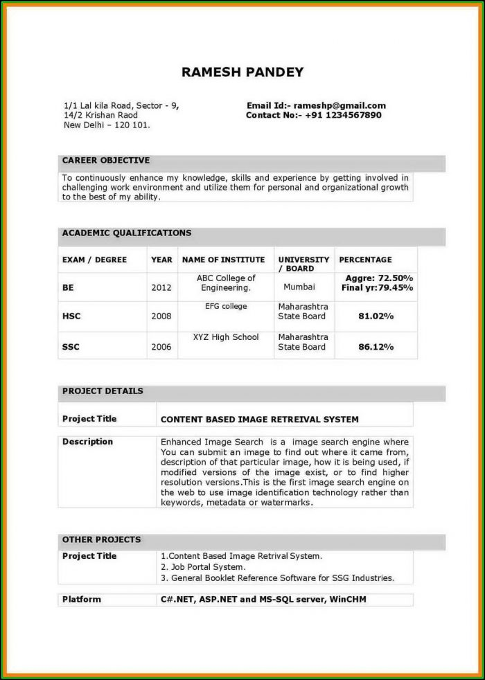 Best Resume Example Ideas