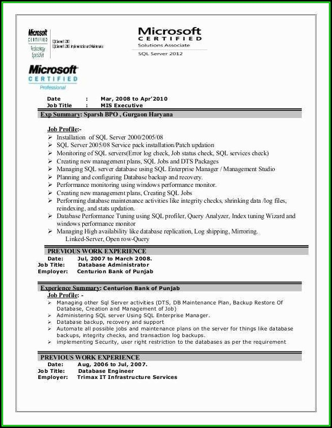 Mis Executive Resume Format Download - Resume  Resume Examples