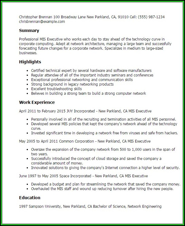 Mis Executive Resume Format In Word - Resume  Resume Examples