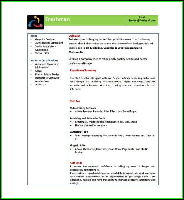Modern Resume Template Word Free Download - Template 2  Resume