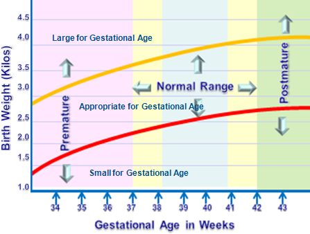 Hormonal Influences on Fetal development