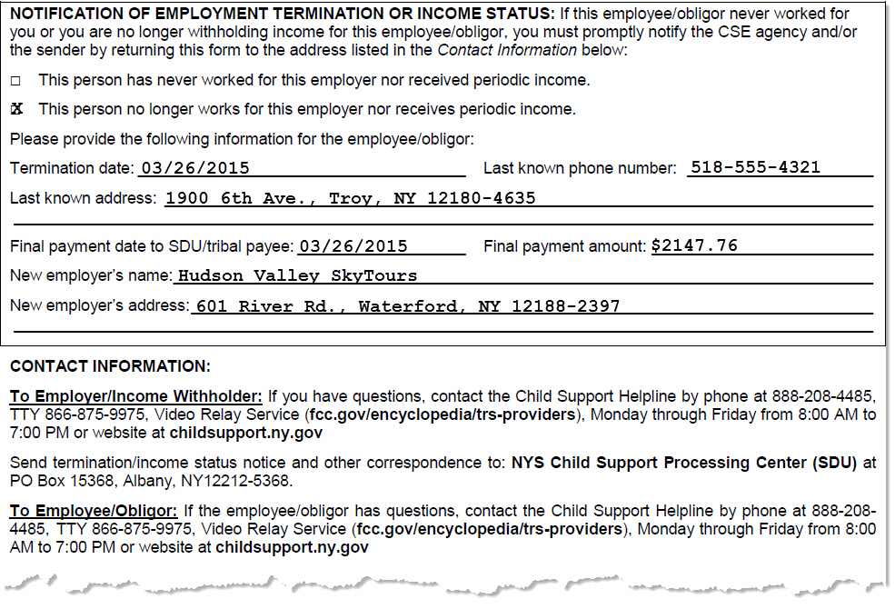 NYS DCSE Report Terminations
