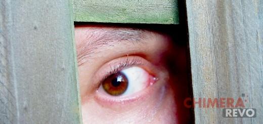 Programmi che spiano la webcam