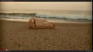 Werner Herzog Plastic Bag