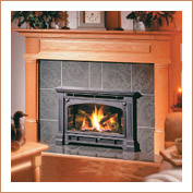Gas Fireplaces Wisconsin - Wood Stoves - Madison ...