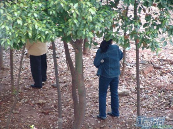 chinese-elderly-in-woods-doing-naughty-things-nanchang-14