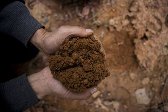Guo Yimin holds a handful of red dirt he dug from the border of China and Vietnam