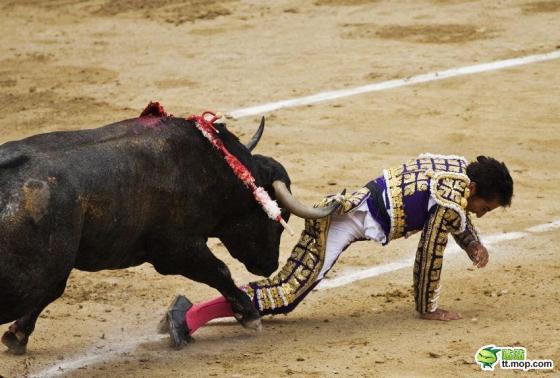 A bull gores a matador from behind.