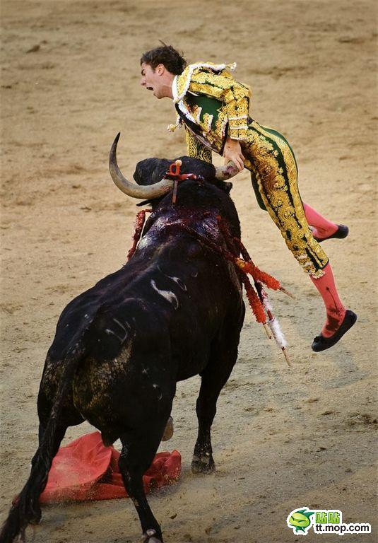 A Spanish matador gored by a charging bull.