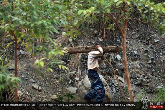 AIDS orphan A-Long carries a dried log on his shoulder by himself.