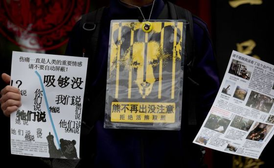 Chinese posters protesting the extraction of bear bile from live bears by Guizhentang.